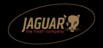 Jaguar Logo L